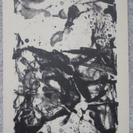 Izumi print