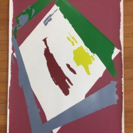 abstract silkscreen
